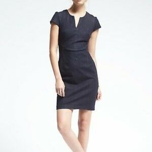 Banana Republic Juno Seamed Fitted Dress